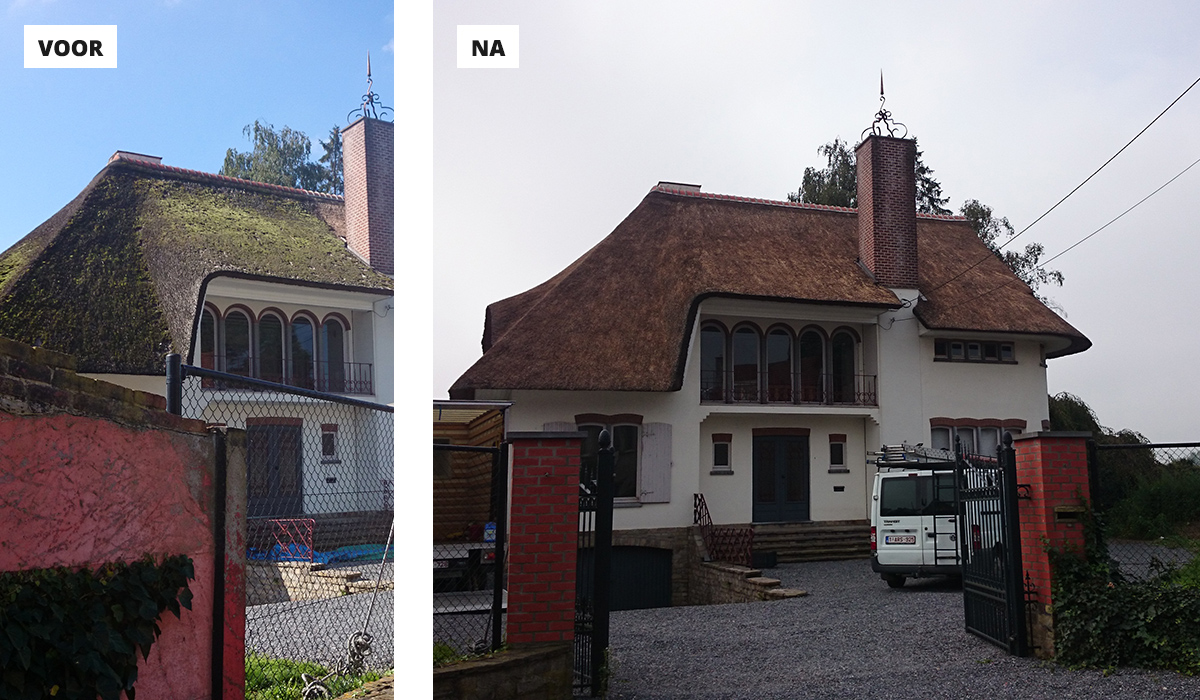 Onderhoud rieten dak raggers rieten daken